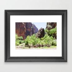 Grounded (Zion National Park, Utah) Framed Art Print