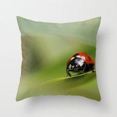 7 Spotted Ladybird Throw Pillow