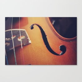 le violon Canvas Print