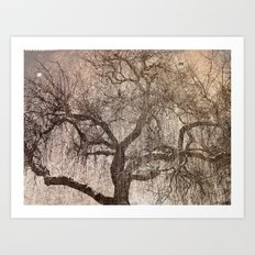 The Bewitched Tree 3 Art Print