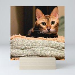 Did You Knock? Mini Art Print