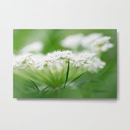 Delicate with Strength Metal Print