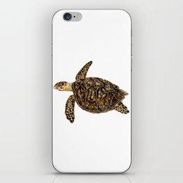 Hawksbill sea turtle (Eretmochelys imbricata) iPhone Skin