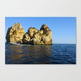 Water Rock  Canvas Print