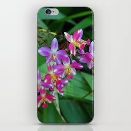 The Wild Side of Wednesday iPhone Skin
