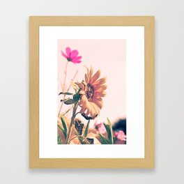 The last one standing strong :0) Framed Art Print