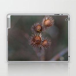 Burr Laptop & iPad Skin