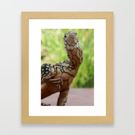 Perentie Framed Art Print