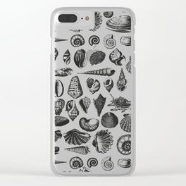 Vintage Sea Shell Drawing Black And White Clear iPhone Case