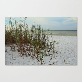 Along the Gulf Shore Canvas Print