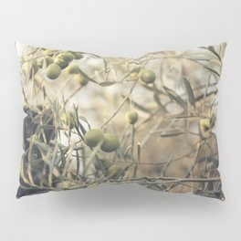 Olive tree Pillow Sham