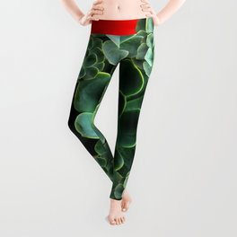 CHINESE  RED ART JADE GREEN SUCCULENTS Leggings