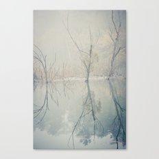 foggy morning at the lake Canvas Print