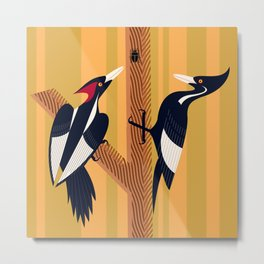 Ivory-Billed Woodpecker Metal Print