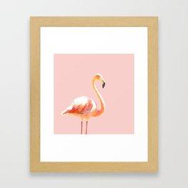 Pink Flamingo Framed Art Print