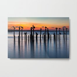Sunset Silhouettes Florida Metal Print