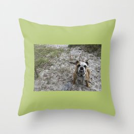We're Staying Right? Throw Pillow