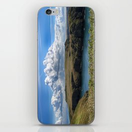 Skomer iPhone Skin