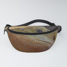 Bearded Dragon 1 Fanny Pack