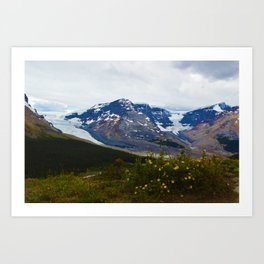 The Athabasca & Snow Dome Glaciers in Jasper National Park, Canada Art Print
