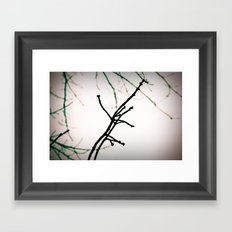 Branching Out Framed Art Print