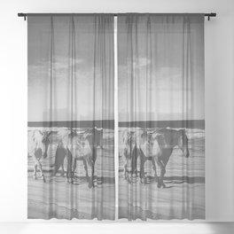 horses on the beach Sheer Curtain