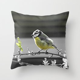 Yellow Belly Throw Pillow