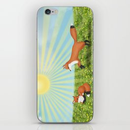 sunshine foxes iPhone Skin