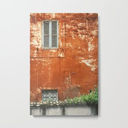 Rusty Housewall Metal Print