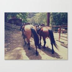 California Horses  Canvas Print