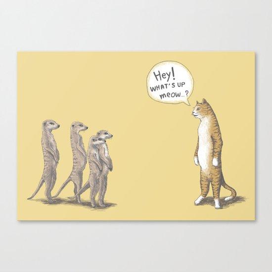 Cat & Meerkats Canvas Print