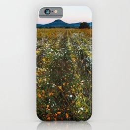 Canatlan iPhone Case