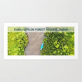 Kabili-Sepilok Forest Reserve, Sabah, Borneo, Malaysia Art Print