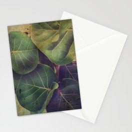 Sea Grape Stationery Cards