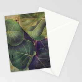 Sea Grape Stationery Cards