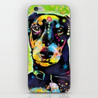 dachshund iPhone & iPod Skins featuring Dachshund by Gary Grayson