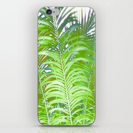 Palm Leaves iPhone Skin