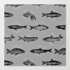 Fishes In Geometrics (Grey) Canvas Print