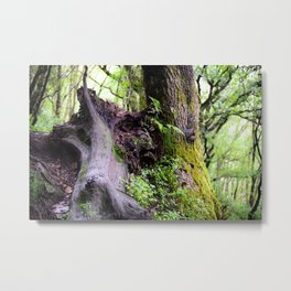The Tree That Grew from Me Metal Print