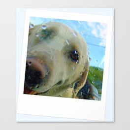After a swim Canvas Print