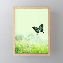 Green Butterfly, Wildflower Meadow, Summer Field Framed Mini Art Print