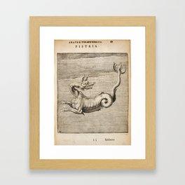 Hugo de Groot's Syntagma Arateorum 1600 - 31 Pistris or Cetus Framed Art Print