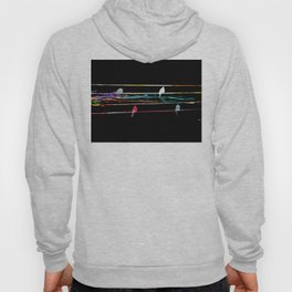 Birds on a Wire Black Hoody