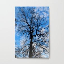 Blue Breeze Metal Print