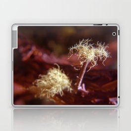 Sea Ranch fungi Laptop & iPad Skin