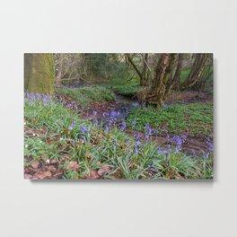 Bluebells by the Brook Metal Print