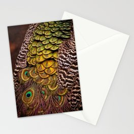 Peacock Tail Feathers Stationery Cards