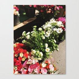 Fleurs de Paris Canvas Print