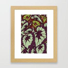 Rex Begonia Illustrated Print Framed Art Print