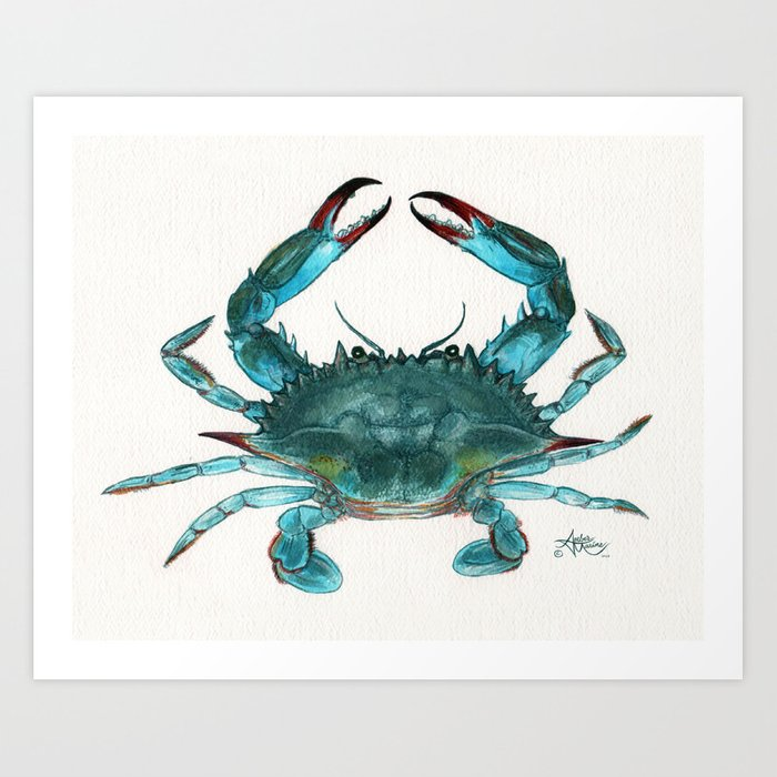 """""""Blue Crab"""" by Amber Marine ~ Watercolor Painting, Illustration, (Copyright 2013) Art Print"""